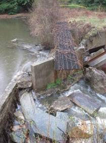 photo of perched culvert on Shores Brook