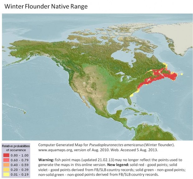 Winter flounder native range